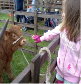 May 2011, Chloe and the cute calf!
